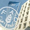 FAO destaca importancia de la biodiversidad en seguridad alimentaria