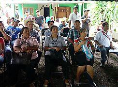 En Chiriquí MIDA expone resultados en cultivos de plátanos
