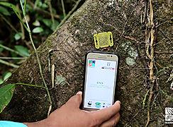 La deforestación un problema de todos