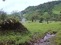 Inauguración del sistema de riego de Cordillera en distrito de Boquerón