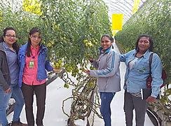 Sanidad Vegetal realizó  capacitaciones en tierras altas chiricanas