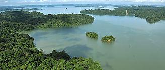 Los humanos han deteriorado un tercio de las áreas protegidas del mundo