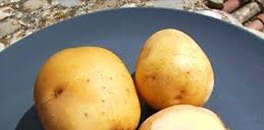 Científicos alertan sobre varios alimentos comunes y peligrosos