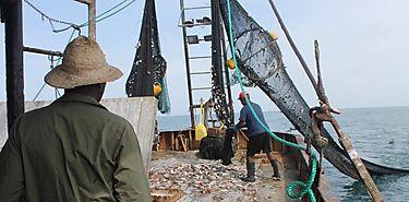 Gobierno de Costa Rica busca solución conjunta para sector pesquero