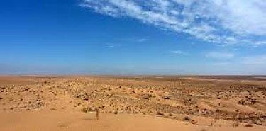 Patentan proceso que puede convertir los desiertos en verdes praderas