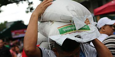 IMA investigará supuesta venta irregular de arroz en la ciudad de Coló