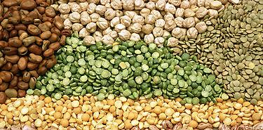 La seguridad alimentaria por el camino de las legumbres