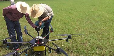 Cómo ha cambiado el sector agrícola Internet