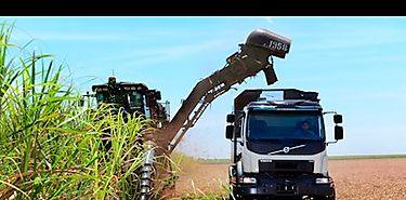 Volvo con dirección automática para aumentar la cosecha de caña de azúcar