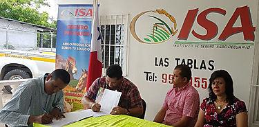 Convenio de reforestación con plantones de cacao