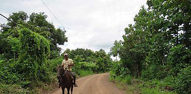 Nuevas carreteras en las comarcas facilita cooperación entre Panamá y la FAO para fortalecer la agricultura