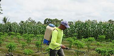 Seminario sobre desarrollo de seguridad agropecuario