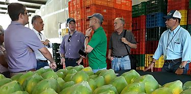 Iniciarán piloto para proceso de registro de agroexportaciones