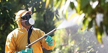 MIDA y MINSA capacitaron a operadores de plaguicidas en Herrera