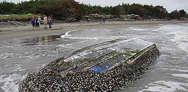 Un Arca de Noé de residuos cruzo el Pacífico tras el tsunami de Japón