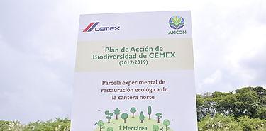 Comienza restauración ecológica de primera hectárea de cantera de CEMEX