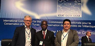 Panamá asume la Presidencia de la Comisión Internacional para la Conservación del Atún del Atlántico ICCAT