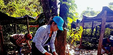 EcoISAE realiza jornada de voluntariado Ecológico