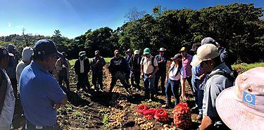MIDA entrega semillas de papa a productores de la comarca  NgäbeBuglé