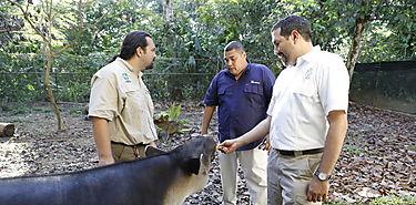 MiAMBIENTE y APPC estudian instalar centro de atencón para animales silvestres