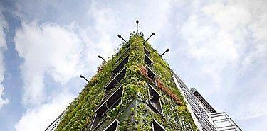 Jardines verticales para enfriar edificios