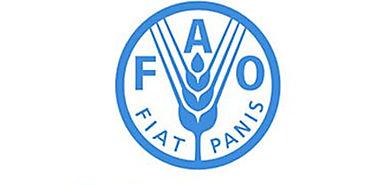 FAO y OCDE abogan por inversiones responsables en agricultura