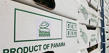 Éxito de Panamá Exporta en Expocomer 2018