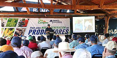 Cartera agropecuaria de Banconal en Chiriquí asciende a B2019 millones