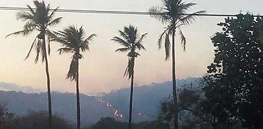 Dos incendios forestales de gran magnitud en Cañazas