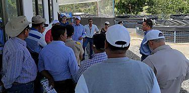 Productores de acuícolas podrán beneficiarse con Proyecto Ley 25