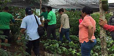 Privados de libertad de La Joyita donan 2500 árboles maderables para la conservación del medio ambiente