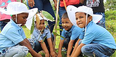 Plantan 180 mil árboles en el Día Nacional de la Reforestación