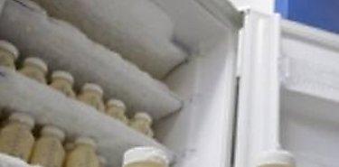 Inducción sobre manejo higiénico de la leche