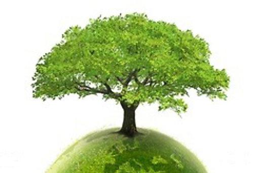 Asamblea Nacional inicia gira de divulgación del Código Ambiental