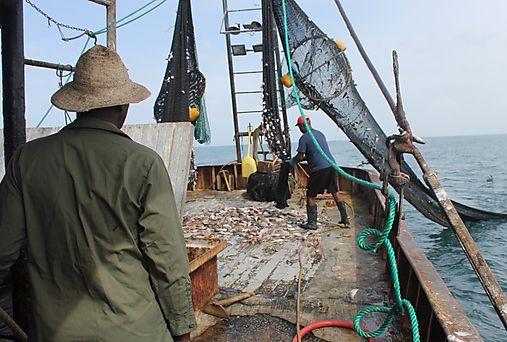 Panamá exportará productos pesqueros a China