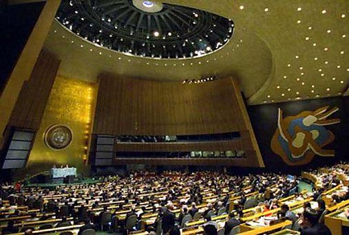 Codex de ONU debate sobre enfermedades transmitidas por alimentos
