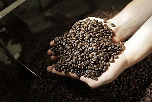 Exportaciones globales de café retroceden en noviembre