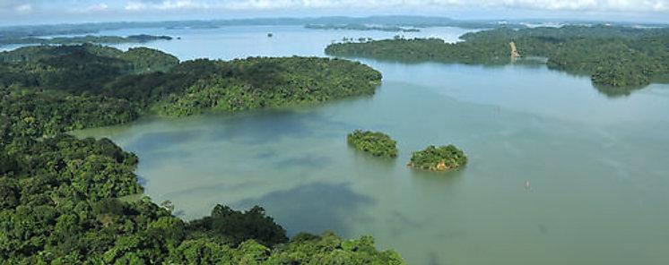 Panamá tiene buen escenario para un sistema de información sobre biodiversidad