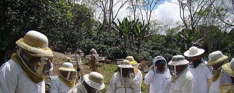 Expertos apícolas del MIDA dictaron jornada de capacitación en la Feria de David