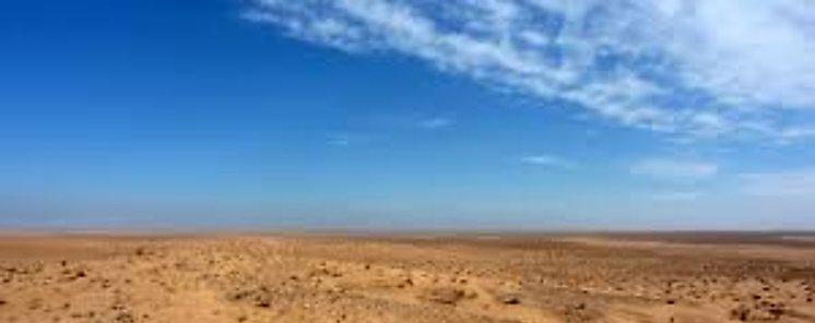 Culmina con éxito prueba de transformación en suelo cultivable de arena en desierto de China