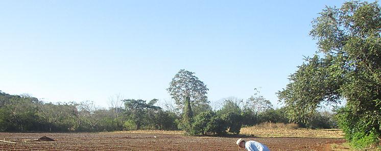 Técnicos agrícolas en Los Santos se capacitan en riego por goteo