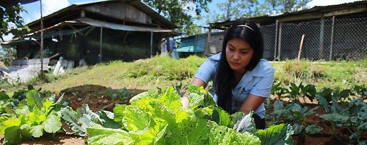 Mercosur busca avanzar en políticas de agricultura familiar