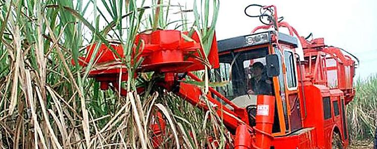 Opera con éxito modelo de cosechadora cañera chinocubana