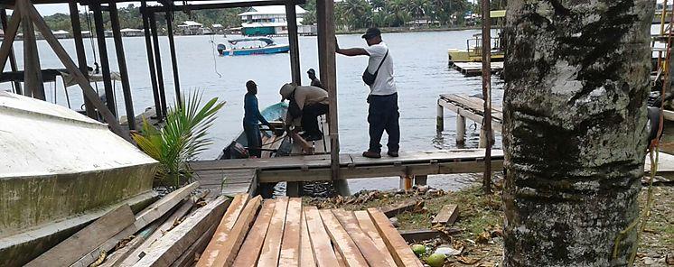 Ministerio de Ambiente intensifica acciones legales en Panamá Este y Darién contra tráfico de madera