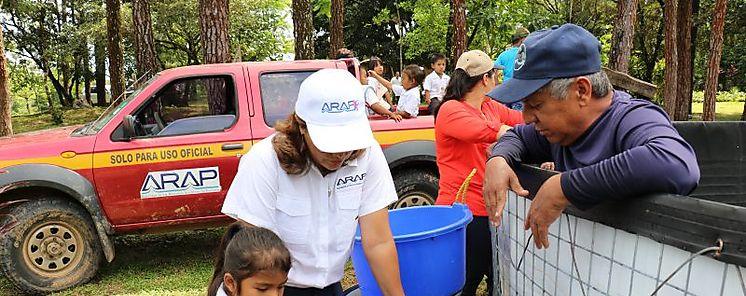 Cosechan Tilapia en la Región Comarcal de Veraguas