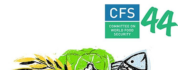 Comité de Seguridad Alimentaria Mundial inicia 44º período de sesiones