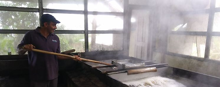 MIDA apoya producción de panela en Chiriquí