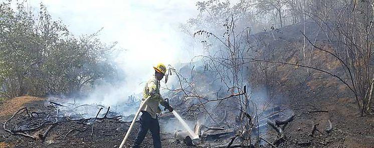 MiAMBIENTE lanza campaña de prevención de incendios en masas vegetales 2018