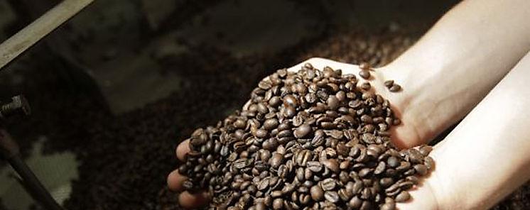 Proyecto de café inicia capacitaciones a productores de Los Santos