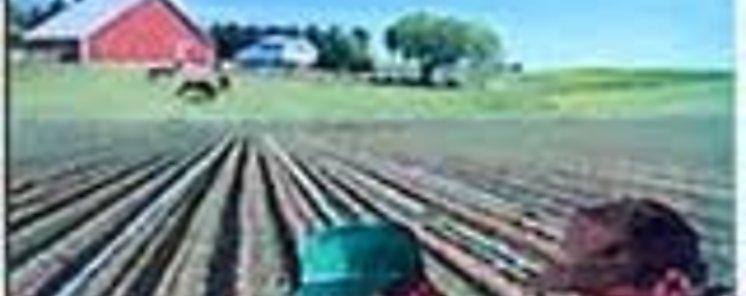 Premian soluciones innovadoras para la vida cotidiana en la Agroindustria